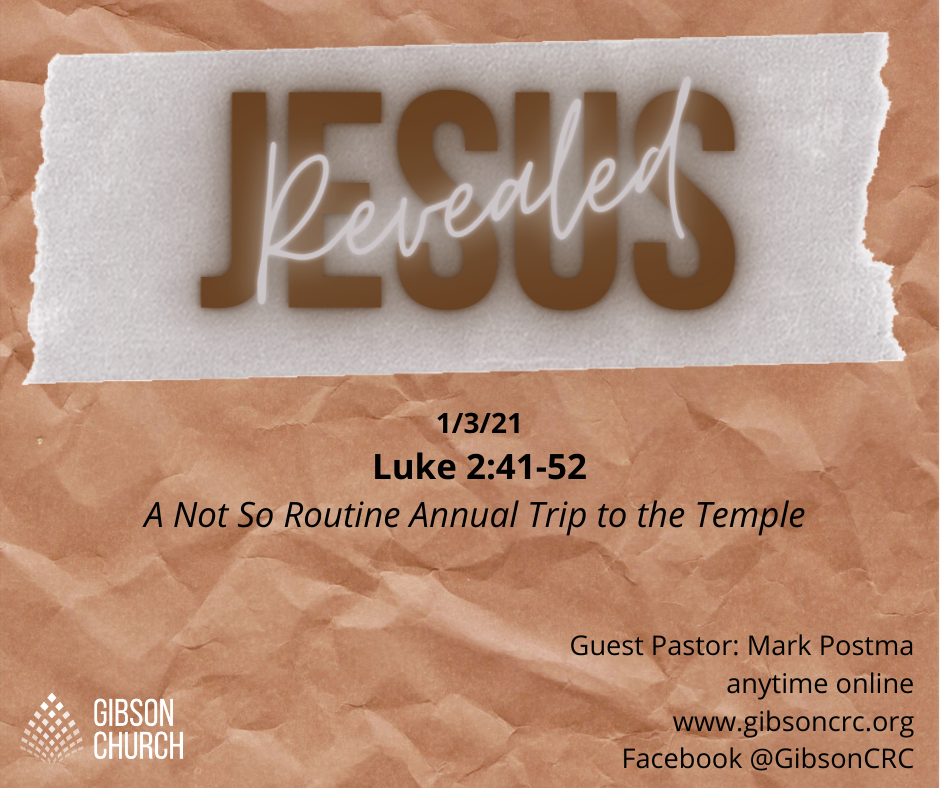 Jesus Revealed in a Not So Routine Annual Trip to the Temple with Mary and Joseph