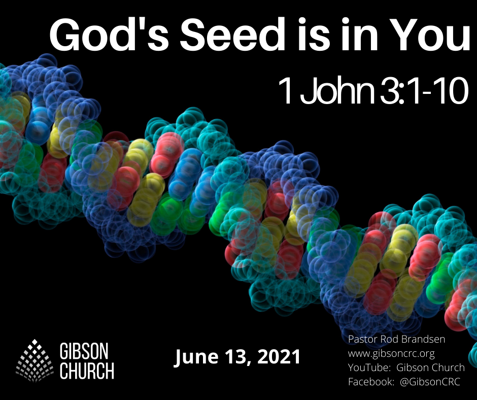 God's Seed is in You